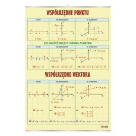 Współrzędne punktu i wektora - plansza dydaktyczna