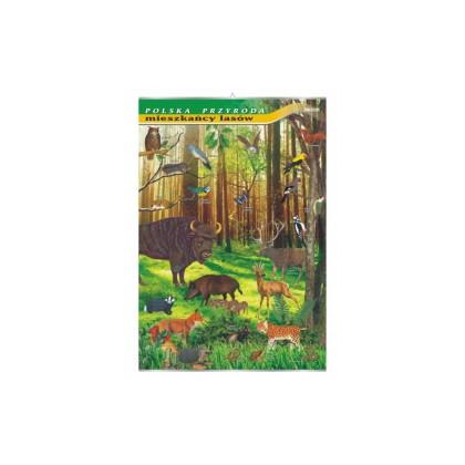Mieszkańcy lasów - plansza dydaktyczna