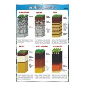 Profile glebowe