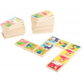 Gra domino - ptaki świata